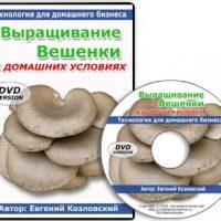 http://troobadoor.ru/wp-content/uploads/2016/08/veshenki-200x200.jpg